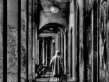 Modena---Ombre-in-città.jpg